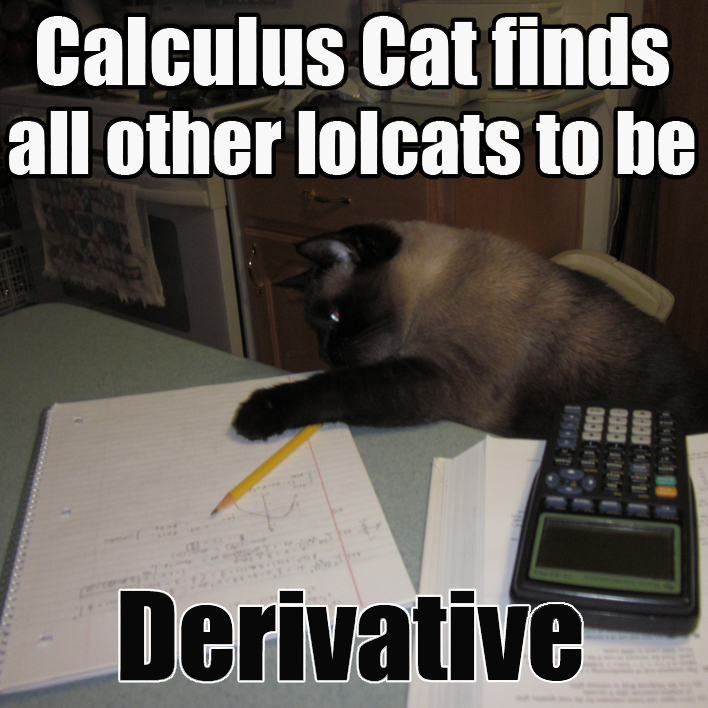 Single Variable Calculus 3rd Edition
